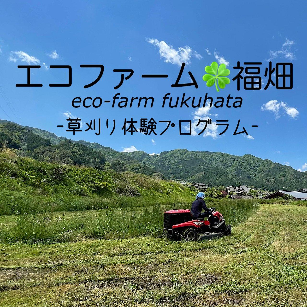 草刈り体験プログラムのイメージその1