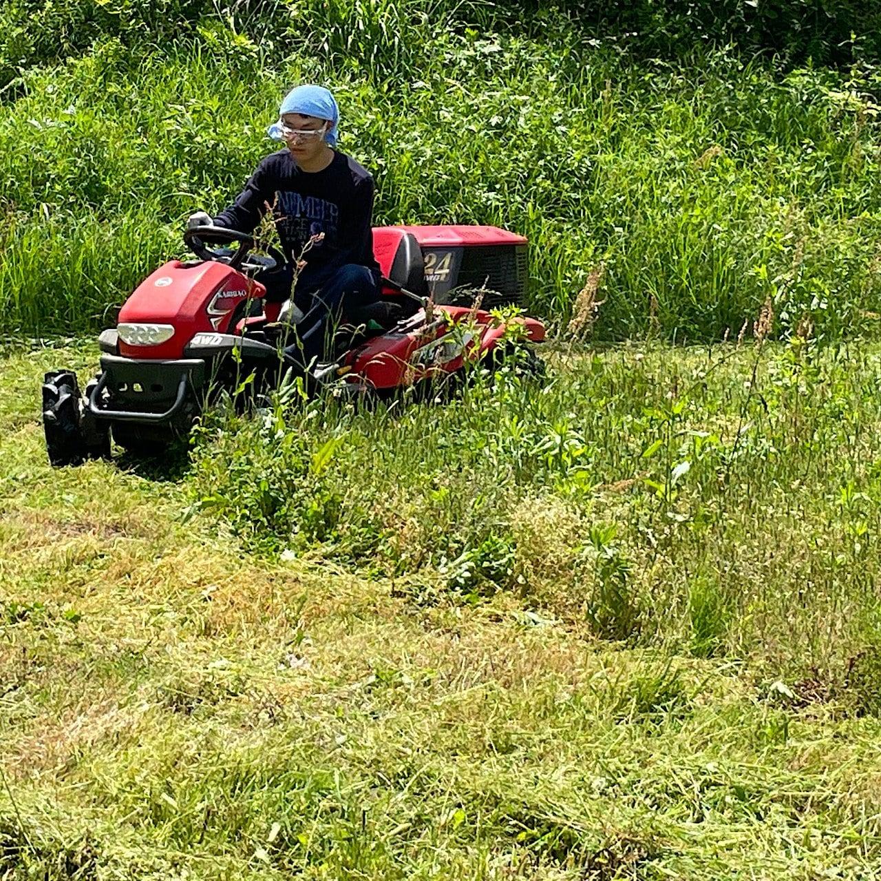 草刈り体験プログラムのイメージその2