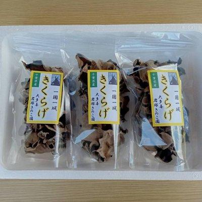 乾燥キクラゲ3個入りセット(35g✕3個)送料込み 君塚きのこ園・自然...
