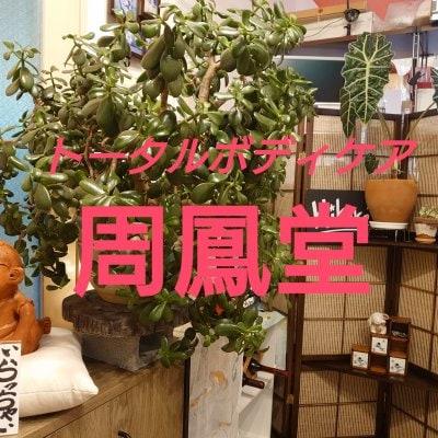 現地払い専用【周鳳堂】施術¥5,000チケット