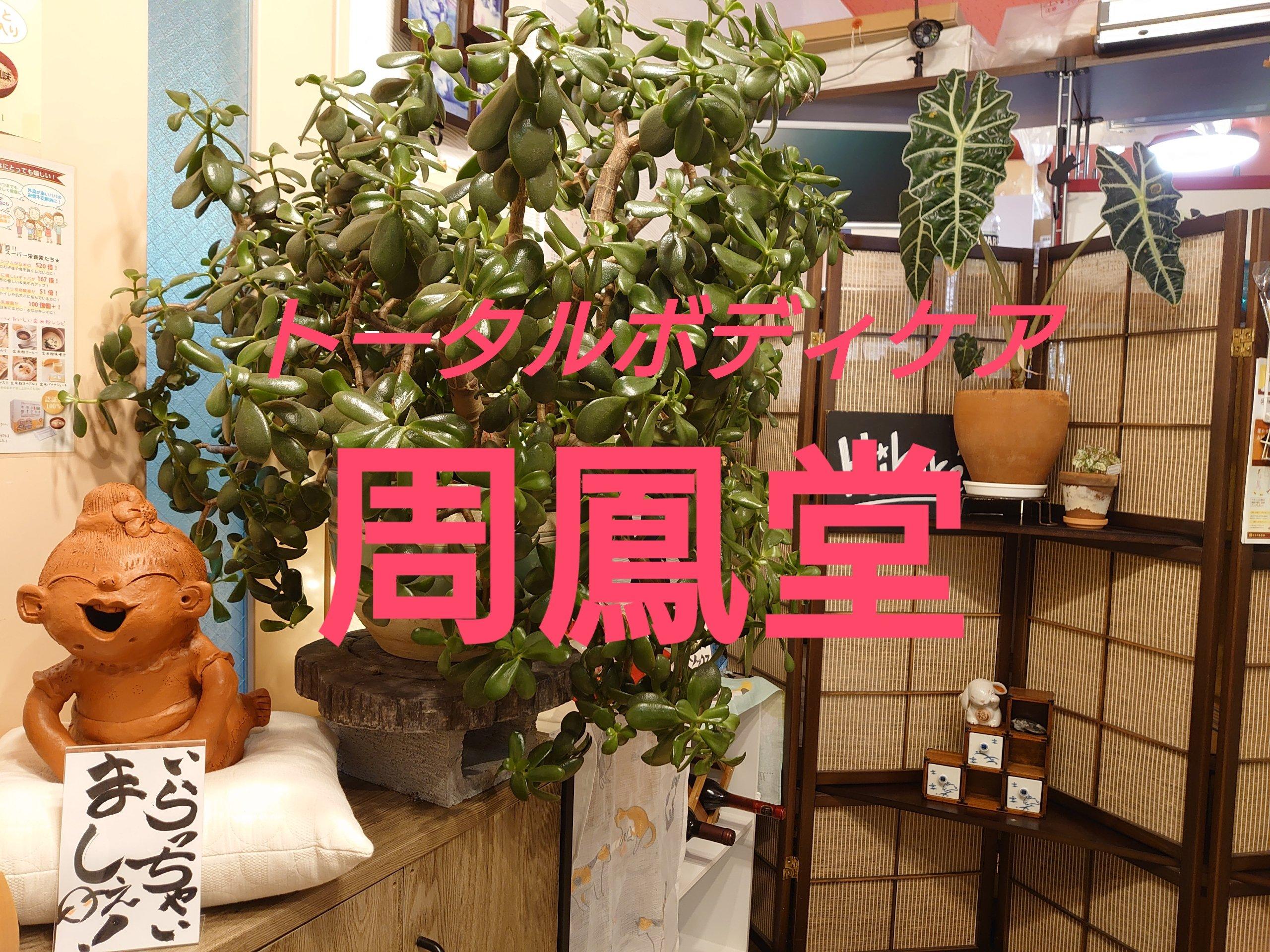 現地払い専用【周鳳堂】施術¥4,000チケットのイメージその1