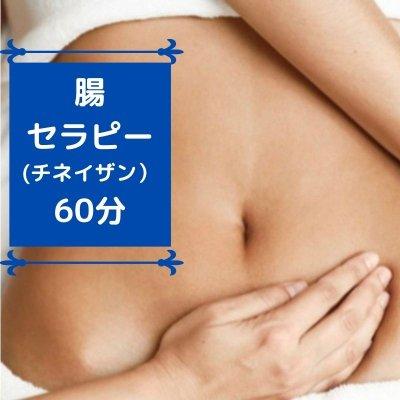 チネイザン腸セラピー60分 町田 五感を癒すプライベートサロン 花笑mine(はなえみん)