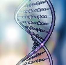 DNAアクティベーションのイメージその3