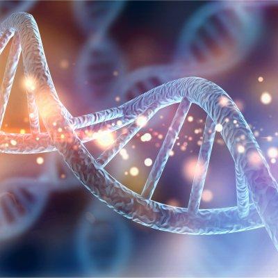 アメガワンドによるDNAアクティベーション
