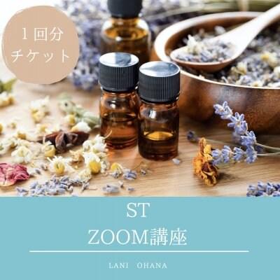 ST ZOOM講座(1回分チケット)