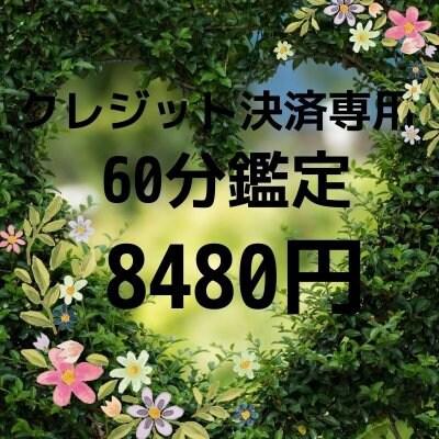 (クレジット決済専用)シードクリアリング60分鑑定