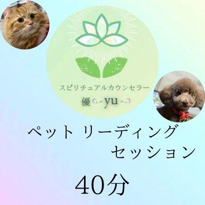 ペットリーディングセッション40分鑑定