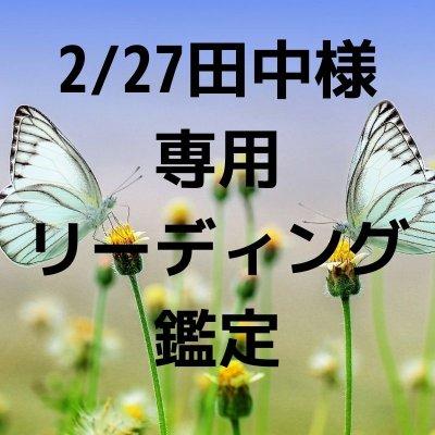 2/27田中様専用シードクリアリング40分鑑定