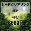 60分シードクリアリング鑑定