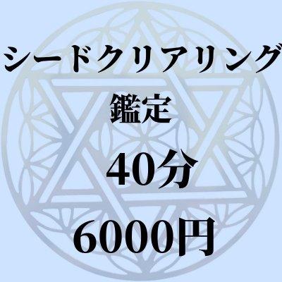 40分シードクリアリング鑑定