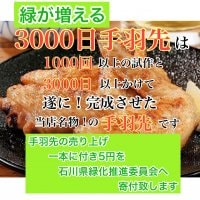 【送料無料】緑が増える!3000日手羽先(5本×8袋入り)