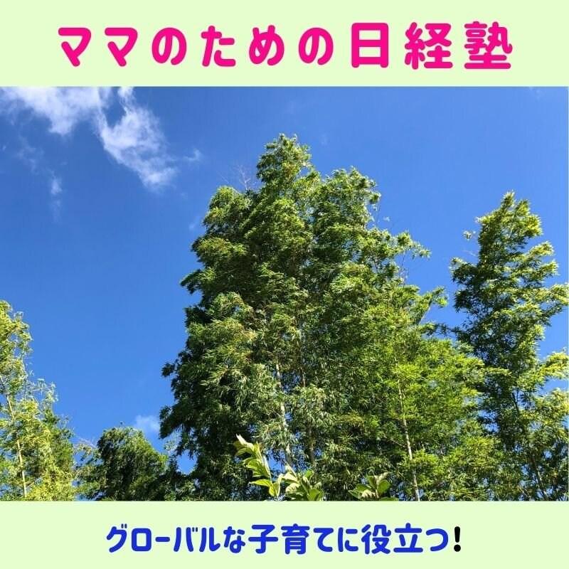 ママのための日経塾 3,000円/90分 のイメージその1