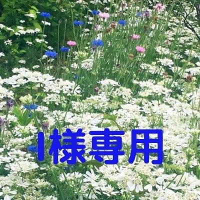I様専用 5,000円/90分【個人】