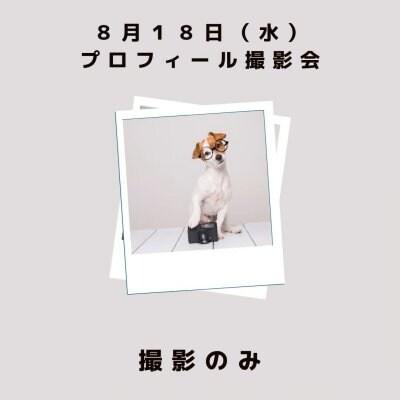 8月18日(水)「プロフィール撮影会」撮影のみ