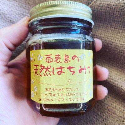 西表島産 レア 生ハチミツ