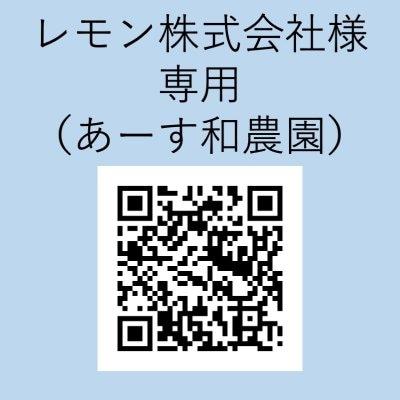 【レモン株式会社様専用】野菜各種 10kgあたり/10個あたり(あーす和...