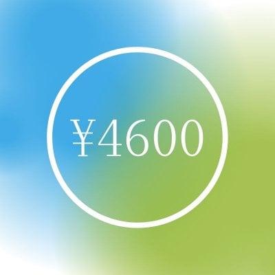 4600円チケット
