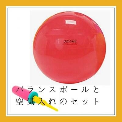 【送料込み】ギムニクバランスボールと空気入れのセット