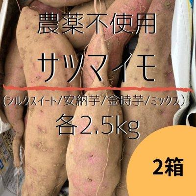 約2.5kg×2箱/種類が選べる農薬不使用のサツマイモ(シルクスイート/安納芋/金時芋/ミックス)土付き【数量限定】