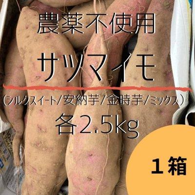 約2.5kg×1箱/種類が選べる農薬不使用のサツマイモ(シルクスイート/安納芋/金時芋/ミックス)土付き【数量限定】