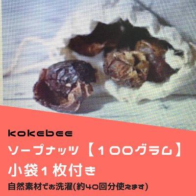天然素材でお洗濯【ソープナッツ】土に還る洗剤 100g〜 壱岐 nurseYOGA...