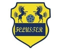 FC LUSTER|2021リーグ試合費のイメージその1