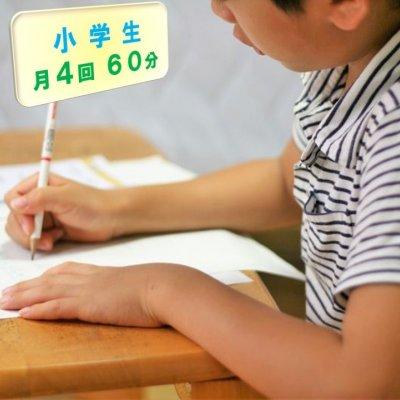 小学生家庭教師/お月謝/月4回チケット/60分(現地払い専用)