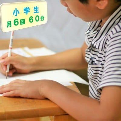 小学生家庭教師/お月謝/月6回チケット/60分(現地払い専用)