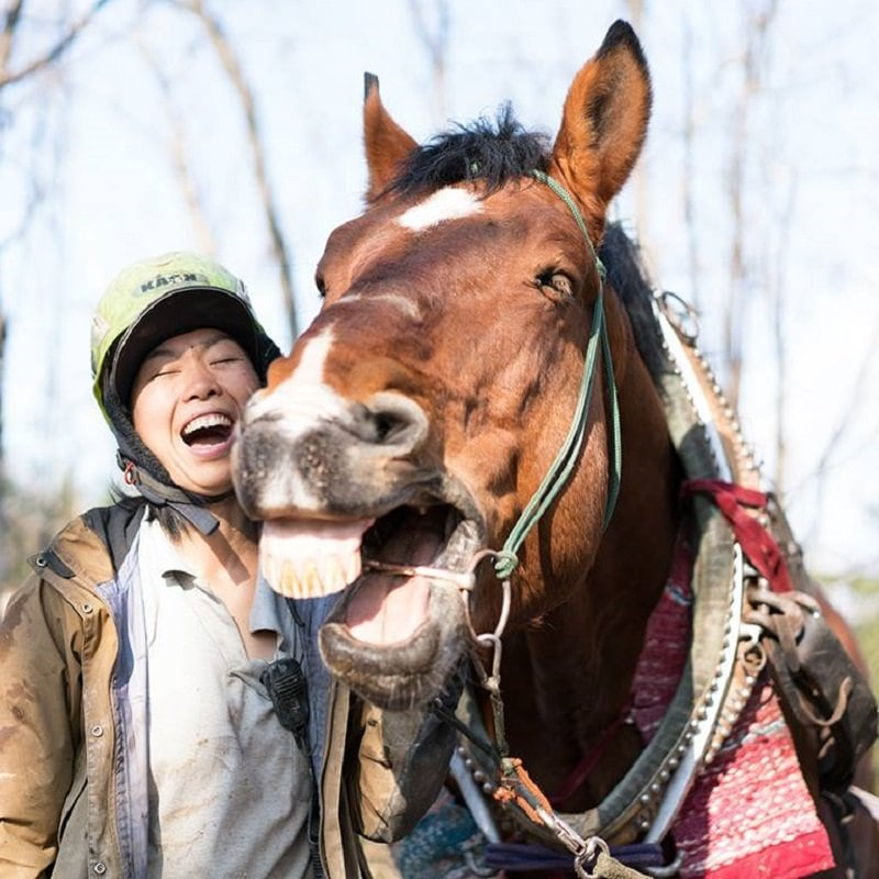 【働く馬!】ヤマトの里山応援チケットのイメージその1