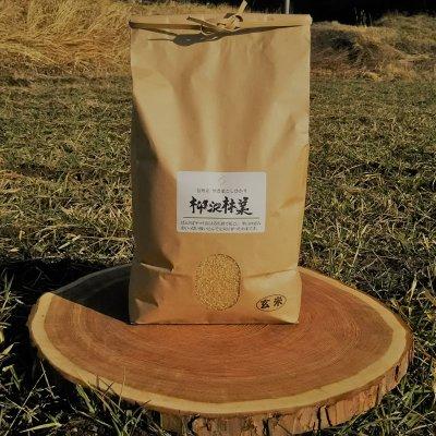 働く馬『ヤマト』と育てた 信州産無農薬こしひかり【玄米】内容量4.5kg...