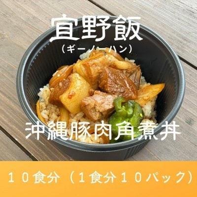 【10食分】島豚ごろごろ宜野飯(ギーノーハン)
