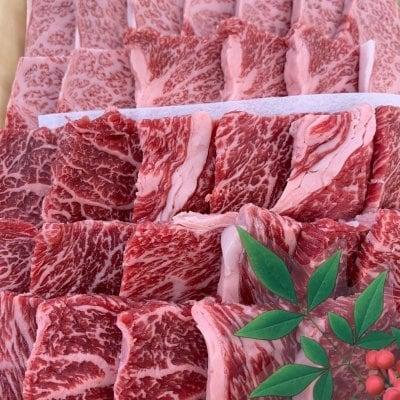 阿波黒牛 こだわりのお任せ焼き肉セット (600g)
