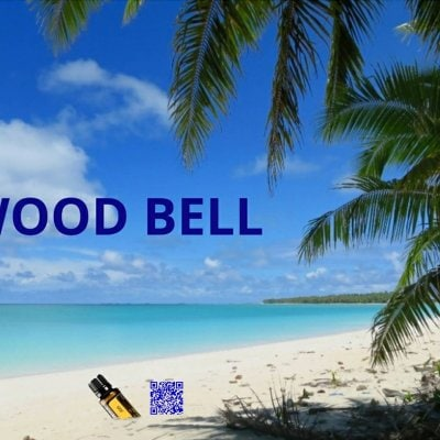 WOOD BELL CAMP&BBQ 1泊チケット