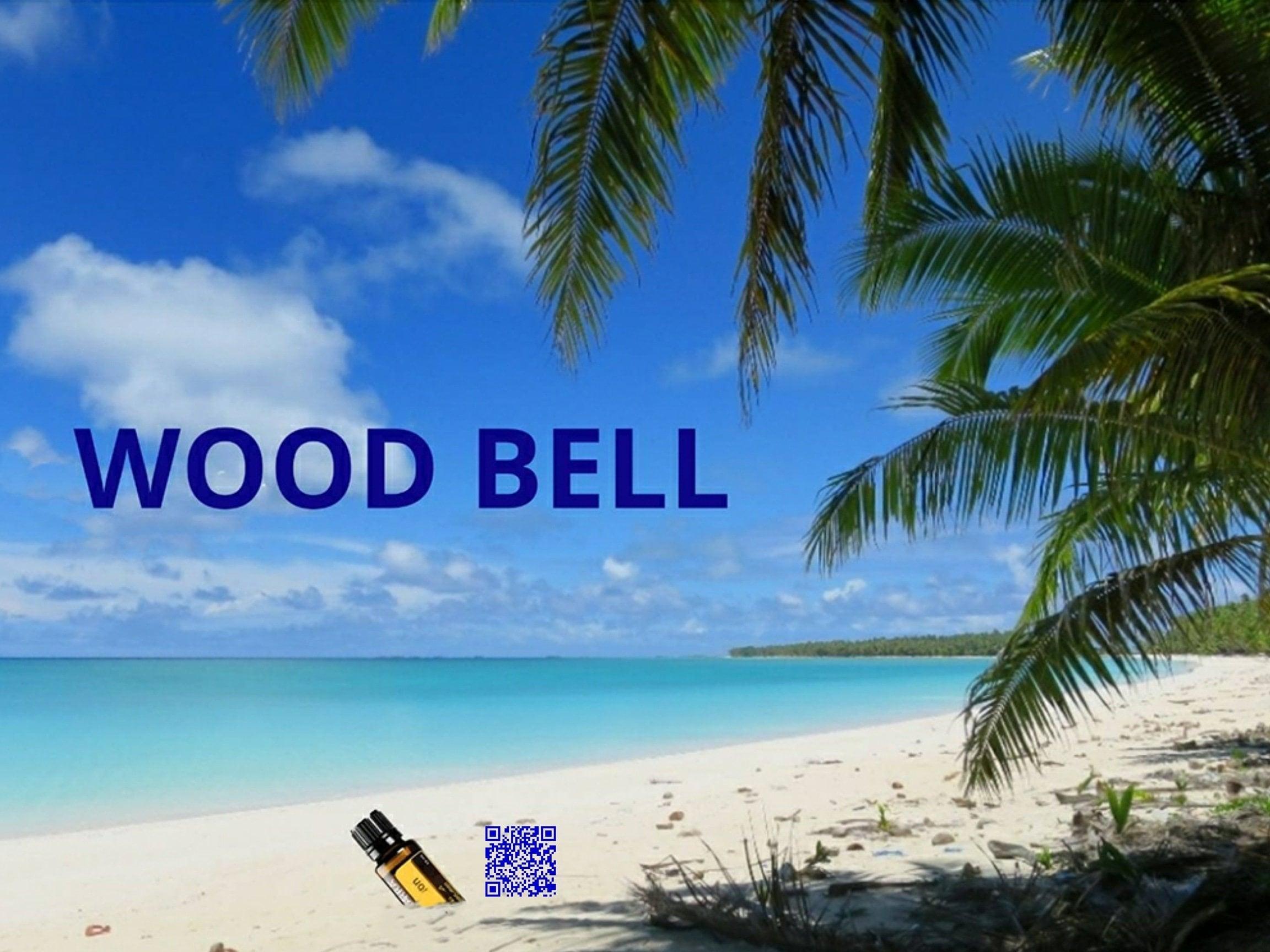 WOOD BELL CAMP&BBQ 1泊チケットのイメージその1