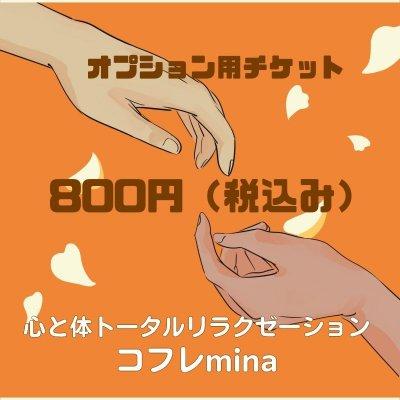 オプションチケット 800円