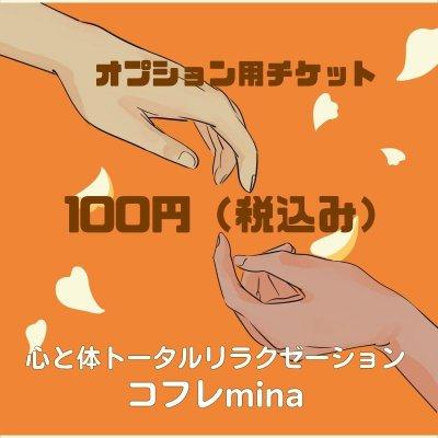 オプションチケット 100円