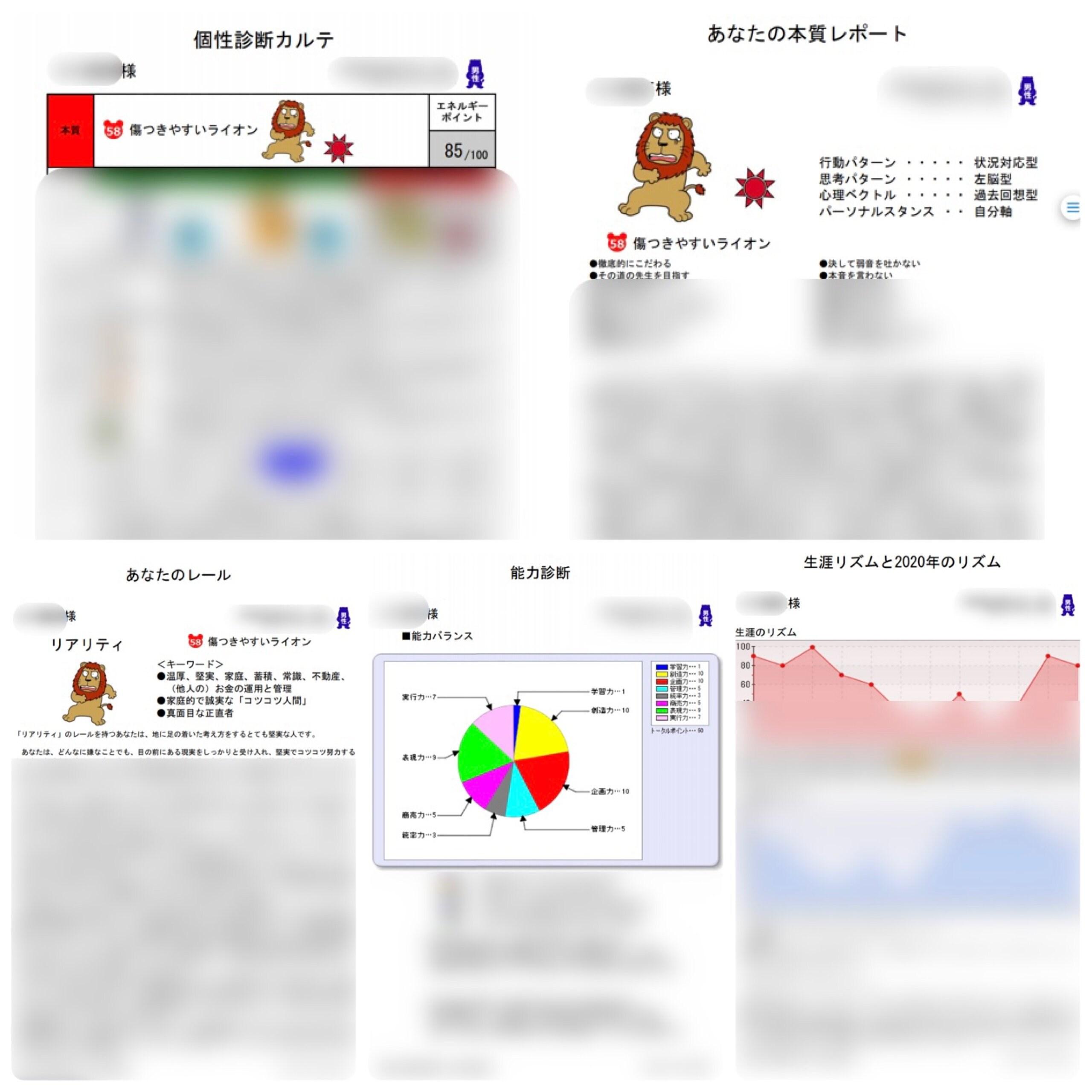 【勝てるチームを持つ!】オンライン自己分析&チーム分析ZOOMセッション90分【6,600円分レポート5枚付き】売上UP、目標達成のために使える!!のイメージその4