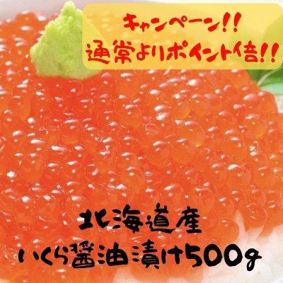 北海道産/いくら醤油漬け/500g/岐阜鮮魚通販/六連鯛市場/六連鯛センター