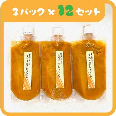 ■12ヶ月定期【🥕人参ドレッシング🥕】毎月(300g×3パック)お届け!送料無料!