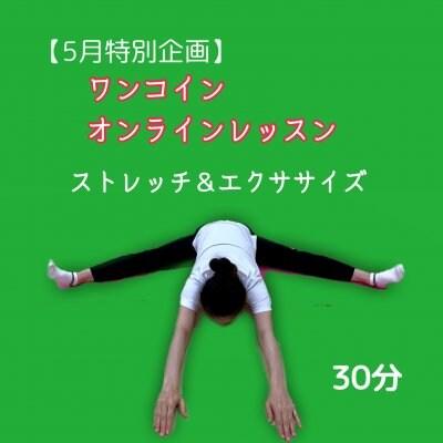 【特別企画】ワンコインオンラインレッスン ストレッチ&エクササイズ 日曜日
