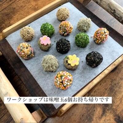 【5/5(水.祝)こどもの日】親子で味噌玉ワークショップ