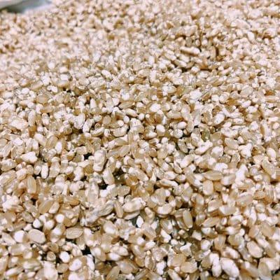 【現地払いのみ】タッパーウェアさんコラボ企画  玄米麹作り