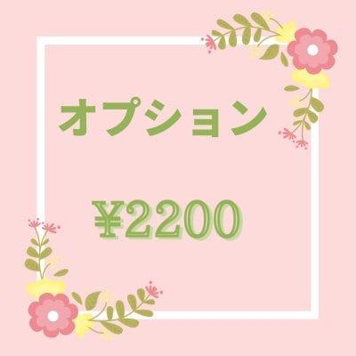 オプション \2200