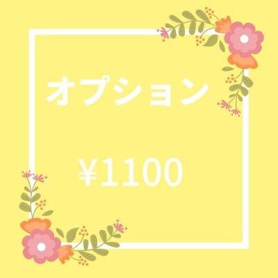 オプション ¥1100