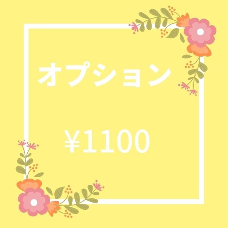オプション ¥1100のイメージその1