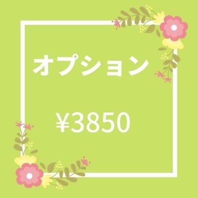 オプション \3850