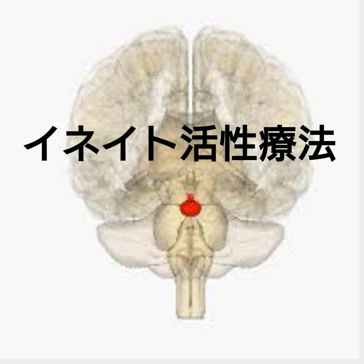 イネイト活性療法初回のイメージその1