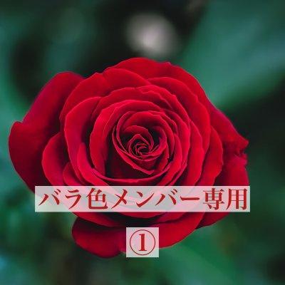 バラ色メンバー専用①
