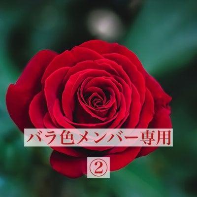 バラ色メンバー専用②