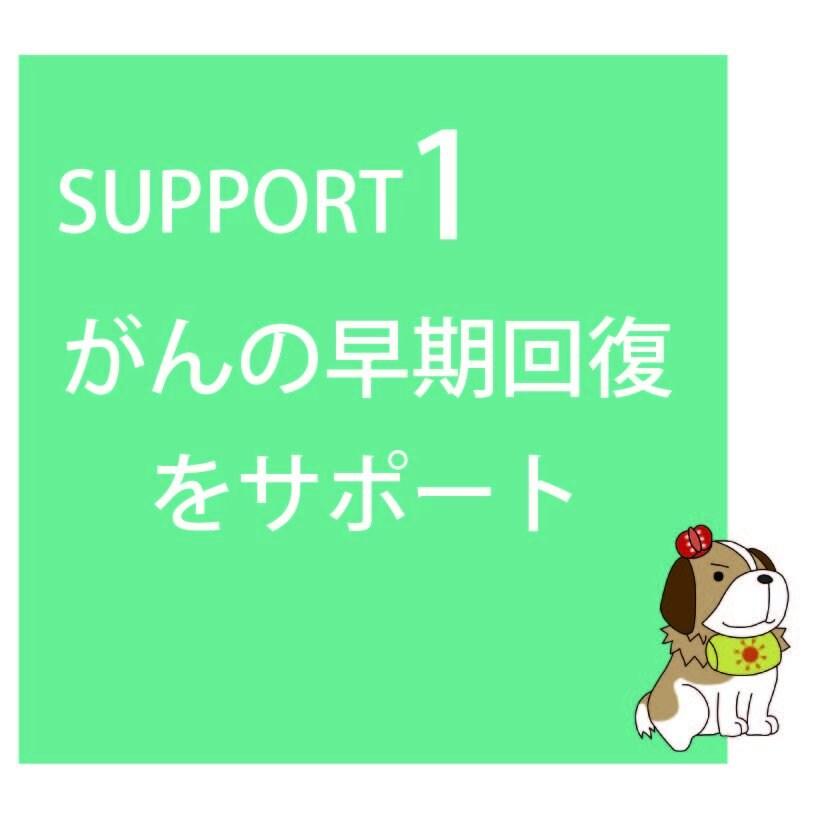 〜会員制がん総合ケアサポート〜『がんほっとけん会員』のイメージその2